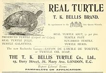 Turtle_Co._advertising